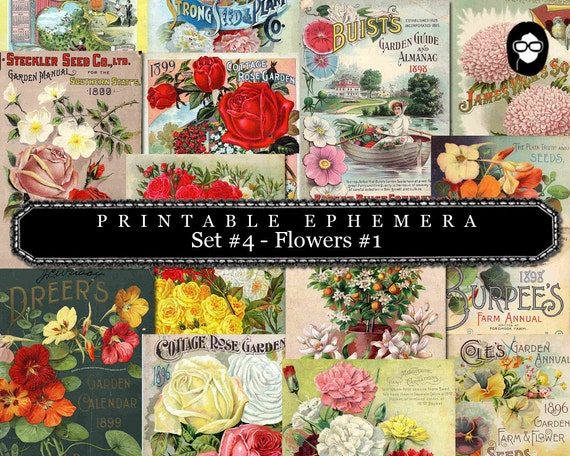 Blank Journal Cards - Set #4 Flowers #1 - 30 Pg Instant Download - digital collage, digital journal kits, roses clipart floral, ephemera kit