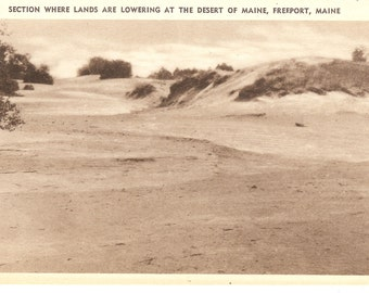 Vintage Postcards...Desert of Maine, Freeport, Maine...Set of Three...unused...no. 2808 to 10