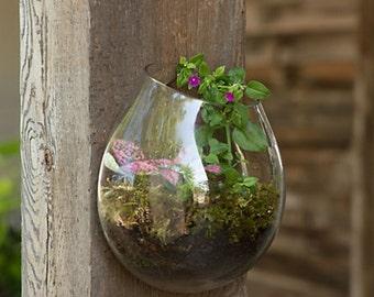 CUSTOM PIECE - Orchid terrarium