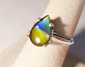 Canadian Ammolite Sterling Silver Ring Size 6.75