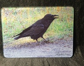 Glass Cutting Board - Raven-  7.75in  x 10.75in