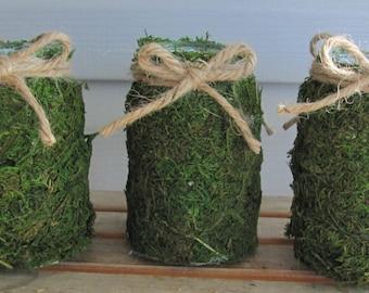 6 Moss Vases, Moss Jar Vases, Rustic Wedding Vases, Woodland Vases, Wedding Jars, Moss Jars