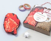 DIY Anatomical Heart Handwarmer Doll Craft Kit