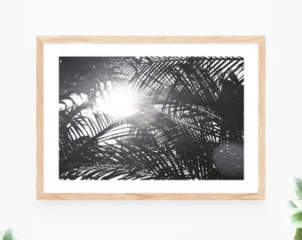 Palm Trees Tropical Leaves Printable Wall Art Instant Download Black and White Photo Contemporary Wall Art Printable Poster Beach Sea Ocean