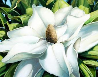 Summer Magnolia. Original Acrylic on Canvas, 40 x 30.