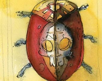 Female Skull Beetle - Print of my original illustration