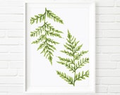 Lady Fern Botanical Print, Nature Wall Art, Green Fern Plate, Abstract Art, Tropical Design, Digital Download Printable