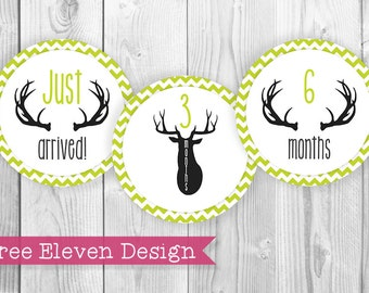 Deer (Green) PRINTABLE Monthly Stickers