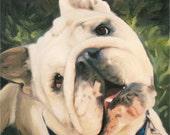Bulldog Breed Custom Dog Portrait on Canvas - Painting from Photo 11x14