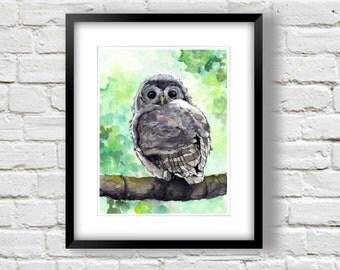 Owl Watercolor - Owl Wall Art - Woodland Decor - Nature Print -  Nursery Owl Art - Baby Owl Painting