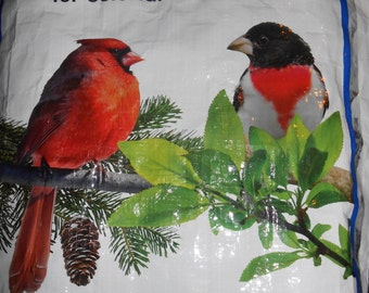 Cardinal and Rose-Breasted Grosbeak ~ Up-cycled Wild Bird Tote