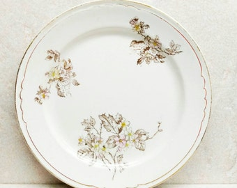 """White Ironstone Plates John Moses Glasgow Pottery Floral Graniteware Dishes Trenton New Jersey 8"""" Eight Inches 1869 Set of 2"""