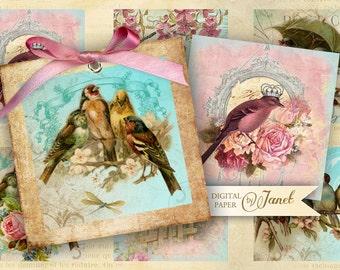 Bird Kingdom - squares image - digital collage sheet  - 2 x 2 inch - Printable Download