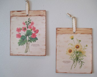 Floral wall hangings botanical prints, set of 2, wall art