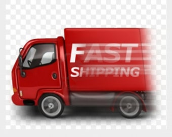 The price difference for fast shipping