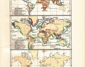 1898 Diversity of Animals Worldwide at the end of the 19th Century - Ruminants, Pinnipeds, Marsupials, Monotremes Antique Statistical Map