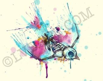 Swallow Skeleton Fine Art Print