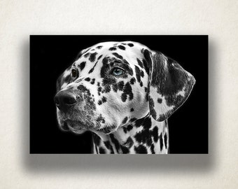 Dalmatian Portrait Canvas Art, Dog Wall Art, Animal Canvas Print, Close Up Wall Art, Photograph, Canvas Print, Home Art, Wall Art Canvas