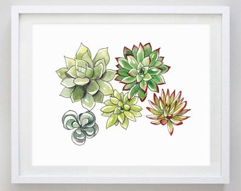 Succulents Watercolor Print  - Succulent Art - Succulent Wall Decor