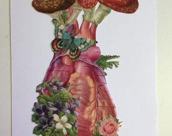Anatomical Heart collage #8 by Bedelgeuse