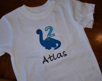 Dinosaur 2nd birthday themed 24 month shirt