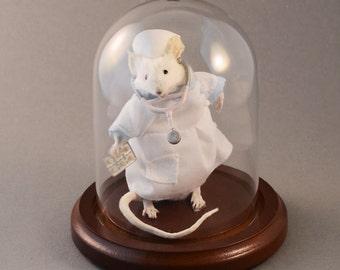Taxidermy Nurse Mouse
