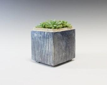 Cobalt Plant holder
