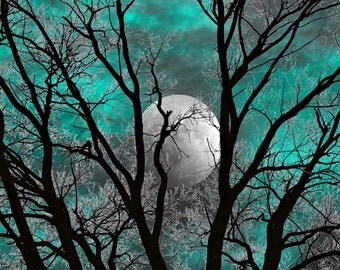 Teal Gray Wall Art Photography, Tree Moon Decor, Teal Home Decor, Teal Bedroom Artwork Matted Picture