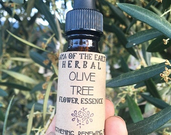 Olive Tree Flower Essence- Organic