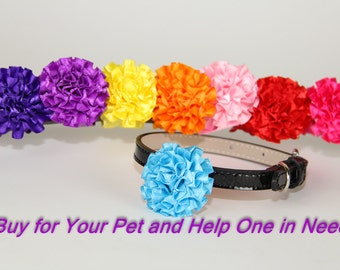 Small Dog Satin Ribbon Dog Collar Flower, Dog Collar Accessory, (Collar not included), Pet Photography, Prop, Collar Attachment