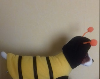 My First Halloween  outfit, a little bumble bee, ideal for chihauahua or dashund