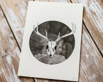 Stag Skull | A5 Giclée Print