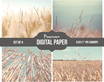 Digital Papers Set - Photo Art - Digital Printable Paper Set - 4 Nature Overlay Papers - Wheat Photography - Printable INSTANT DOWNLOAD