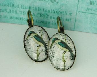 Earrings bronze oval  bird woodpecker