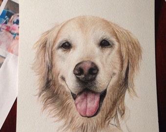 Custom pet portrait: dog in watercolors portrait