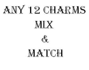 Any 12 Charms mix and Match