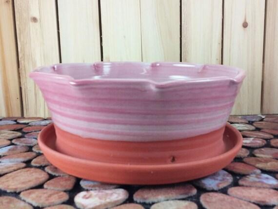Outdoor Pink Flower Pots Blonde Orgasm Videos