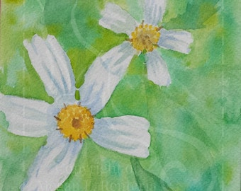 OOAK Watercolor Daisys