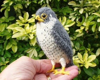 Peregrine falcon, hand knitted bird, miniature peregrine, peregrine ornament, miniature bird, stuffed Peregrine, made in England