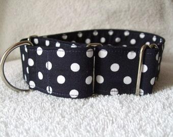 Navy Blue Polka Dot /Spot Hound /  Martingale Dog  Collar