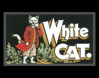 "White cat dressed in a costume. 8 x 10"" Poster print, Ultra Premium poster Paper, kittens, feline"