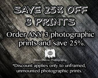 SAVE 25% When You Order 3 Photographic Prints, Fine Art Photographic Prints, 8x12 Prints, 10x15 Prints, 12x18 Prints