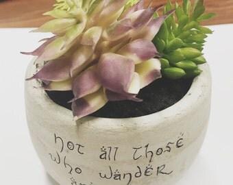 Little LOTR succulent