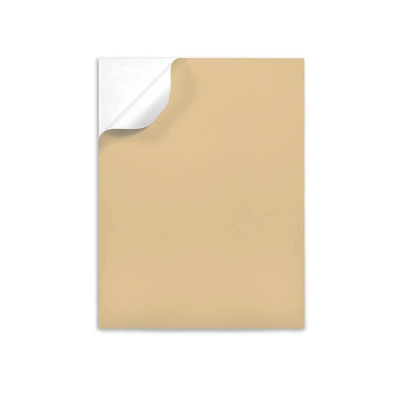 Pastel Color Labels Full Sheet Selfadhesive Letter Size