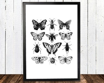 Butterfly collage Print