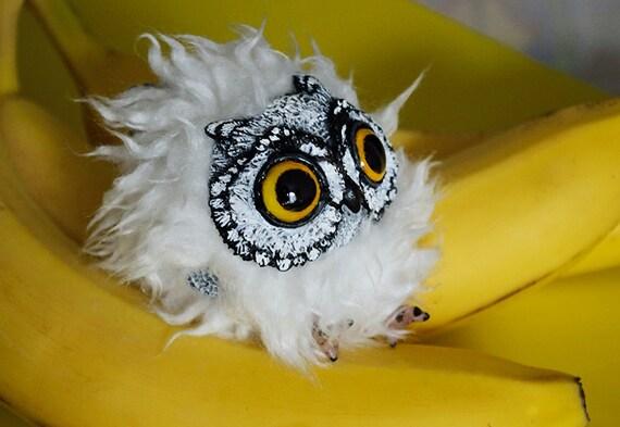 Pygmy owl art doll
