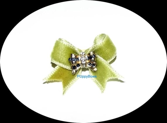 Puppy Bows ~VELVET olive green RHINESTONE navy center hair bow clip Yorkie  barrette dog grooming