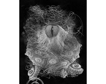 Sea Life #6, Inkjet print  7x9 image on 11x14 archival paper