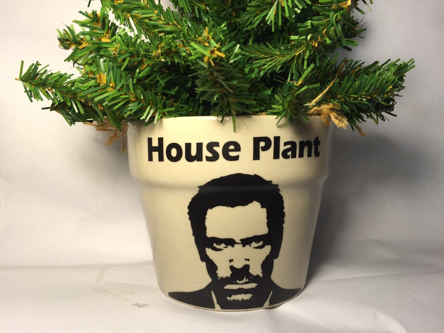 House MD plant planter hugh laurie fan personalized gift for