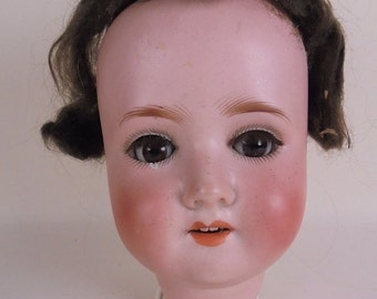 Schoenau Hoffmeister Doll Bisque Head - Dolly Face - c 1909